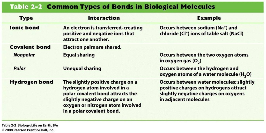 Worksheets Taxonomy Biology4isc 1 biomolecules biology4isc picture