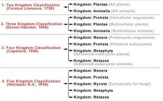 a. Biological classification - BIOLOGY4ISC