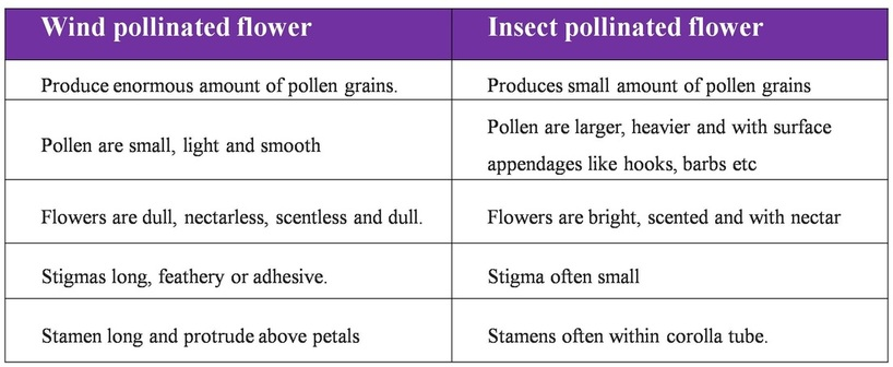pollen to stigma compatibility and self incompatibility biology essay The stigma surface and pollen-stigma interactions in  self-incompatibility (si) and dry stigmas  events leading to compatibility and/or incompatibility (howlett .
